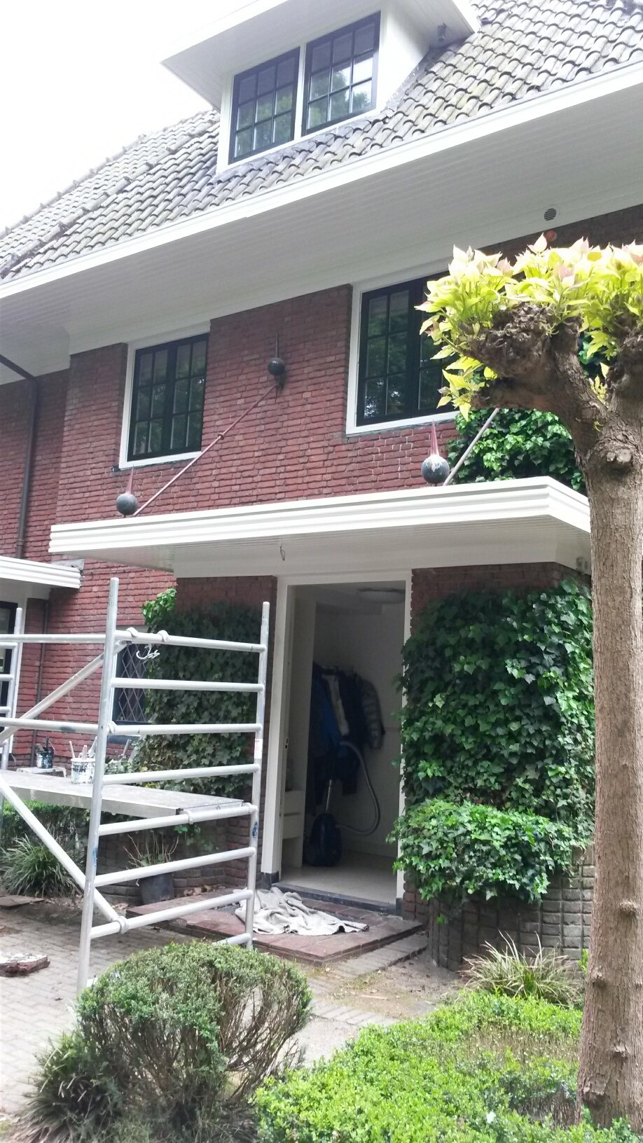 Renovatie en dakgoten reinigen