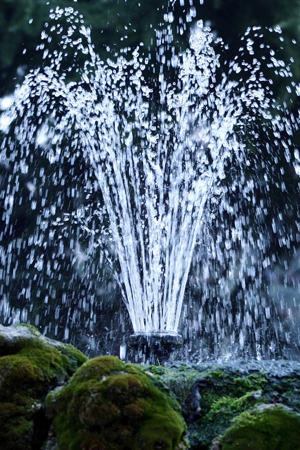 Zowel vijverbakken als vijvers bekleed met folie zijn prachtig in te richten. Natuurlijk met mooie planten, maar soms ook met een fontein.