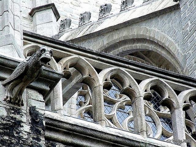 Sint-Gummaruskerk in Lier